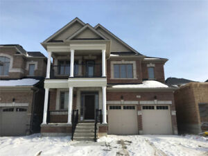 Brand New Home For Rent In East Gwillimbury