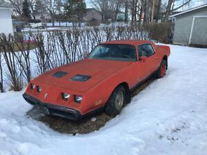 79 firebird parts car