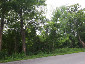 23 Acres Vacant land For Sale