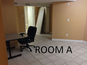 Vaughan-Thornhill Bachelor Basement Apartment Available For Rent