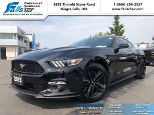 2015 Ford Mustang EcoBoost Fastback  COUPE,FASTBACK,BLACKED OUT,