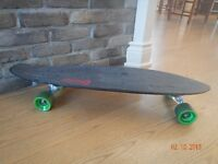 skateboard cruiser sector 9