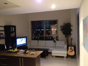 Full high quality apartment furnishings (couch, bed, TV, etc)