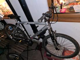 Saracen ruff solid bike!