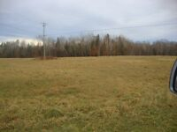 5 Acres with Beach Access to  Grand Lake, Scotchtown