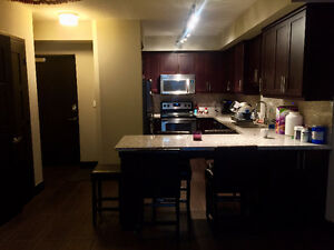 LUXE PHASE II - SUMMER SUBLET (May - August 2016)