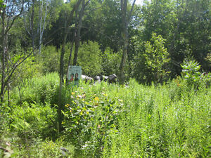 PARRY SOUND: COUNTRY LOT ON YEAR ROUND ROAD ACCESS