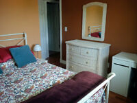 Bedroom with Shared Bath - North Rutland - Avail Now