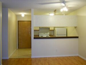 $900 – One Bedroom Condo for Rent in West-End