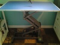 profession dog grooming table