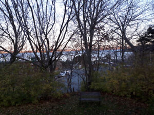A park like setting in the city.  Views of the Bedford basin.