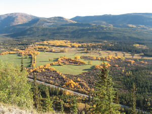 Yukon Agriculture Land for Sale