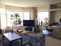 LOVELY STRATHMORE CONDO FOR RENT - hardwood floors lots of light