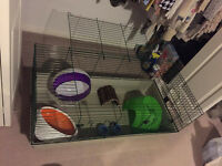 SMALL ANIMAL CAGE (LARGE SIZE) PLUS ACCESSORIES!