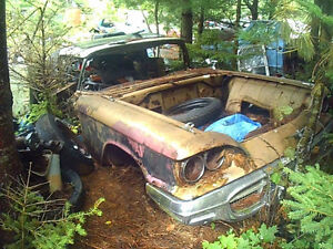 parting out a 1958 T-Bird