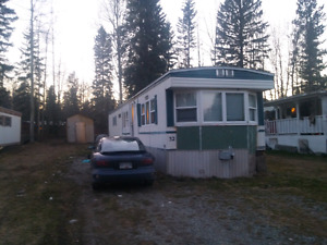 Mobile home in Trailer Village MHP