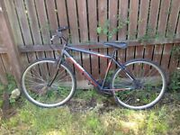 Raleigh sports bike for sale (adult)