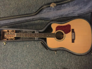 Walden acoustic and Tonewood amp