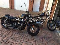 Harley Davidson 48 sportster HD Bobber