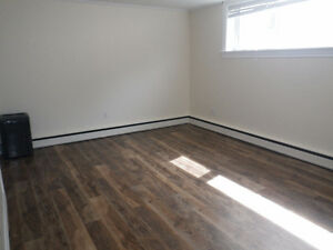 Fully Renovated Downtown Bachelor with Heat & Hot Water Inc.