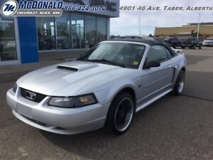 2003 Ford Mustang GT Deluxe  - Low Mileage