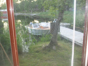 BOAT and MOTOR - Excellent Condition
