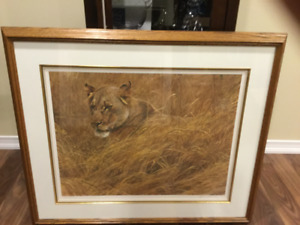 Robert Bateman - In the grass lioness
