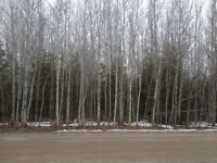 0.66 Acre Lot For Sale With Lake Access