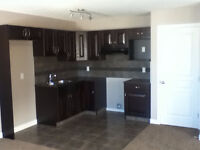 Two level basement suite for rent.