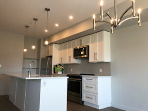 Brand New 2 bed, 2 bath Lower Mission $1900