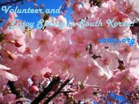 Teaching English to children in rural areas in South Korea