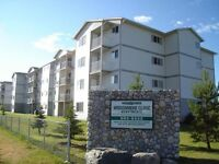 FULLY FURNISHED! - 2 BDRM - IN- SUITE LAUNDRY