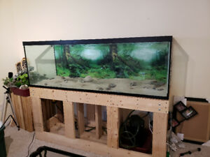 180 gallon fish tank