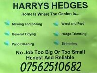 Harrys The Gardener