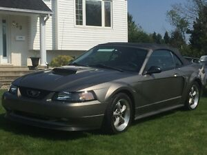 2002 Ford Mustang GT Cabriolet