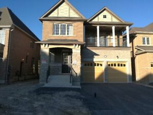 Brand New 4 Bedroom  House in Oshawa for Lease