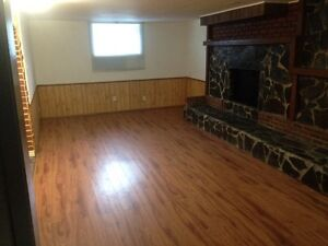 Large 1 bedroom lower apartment. Utilities included