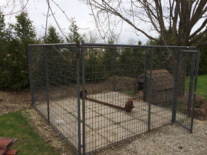 behlen country dog  kennel