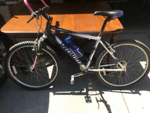 Bicycles  adult  specialized