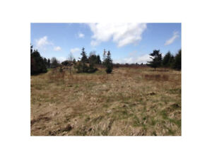 Land For Sale in Bay Roberts, Very Private 213 x213 only $49,900