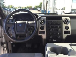 2014 Ford F-150 XLT Peterborough Peterborough Area image 10