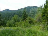 15 acres in Ymir, BC