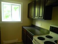 All Inclusive, Cat Friendly 2BR@275 Windmill Road