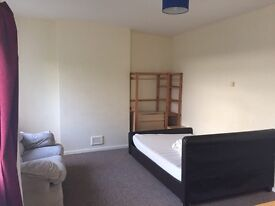 1 large room