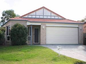 Large single room (fits double bed) for rent in Algester Algester Brisbane South West Preview