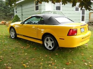 99 Ford Mustang Convertible, 35 year anniversary model, like new