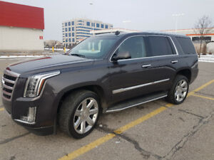 2015 Escalade 49,000km..one owner..no accident