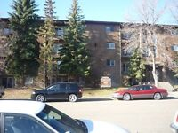 1 One Bedroom Apartment / Condo In The West End
