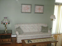 Matching Set Sofa / Lovrseat