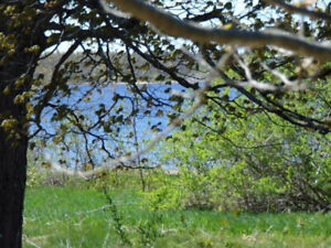 Vacant lot with waterview in Miramichi, NB  MLS® # 02652382